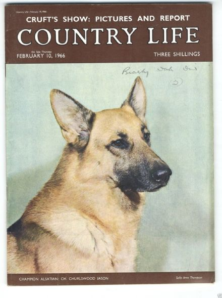 1966 COUNTRY LIFE Magazine JACQUELINE TRENCH EADIE South Level Fens Flood CRUFTS (6953)